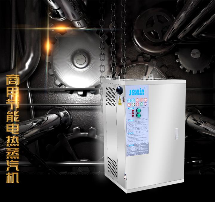 节能电蒸汽发生器插图